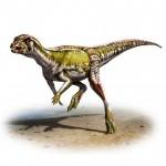 Амурский раскоп динозавра