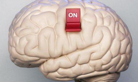 включи мозги
