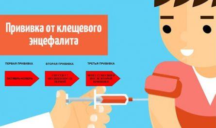 Вакцинация энцефалит